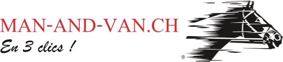 logo man and van